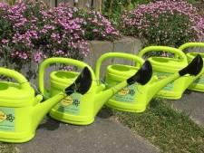 Nieuwegeinse schoolkinderen toveren groene strook om tot wilde bloemenweide