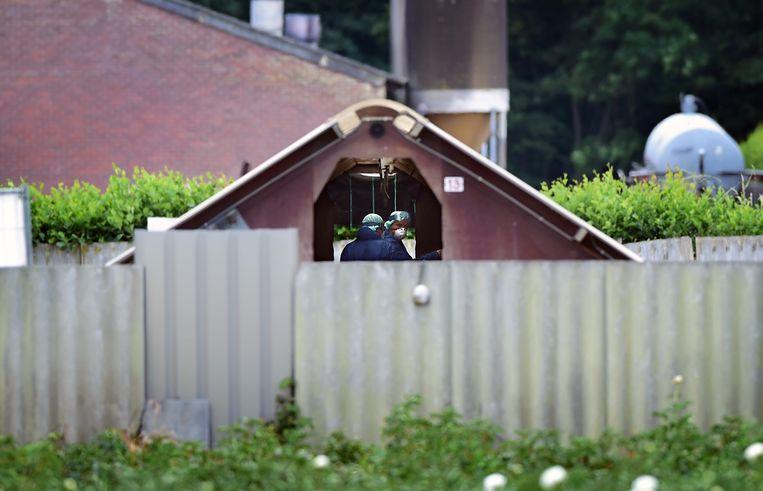Een nertsenfokkerij in Deurne, geruimd vanwege besmettingen met het coronavirus. Beeld Marcel van den Bergh / de Volkskrant