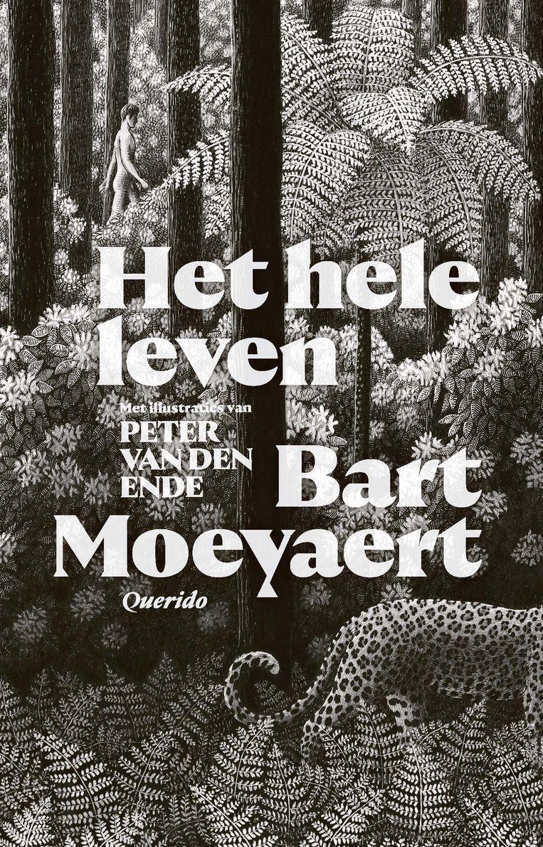 Bart Moeyaert – Het hele leven. Beeld rv