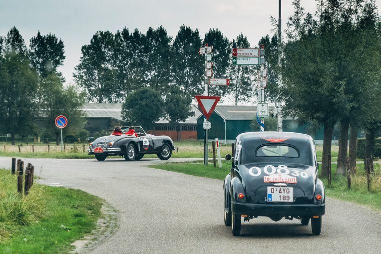 De Zoute Rally steekt de grens met Nederland over. Vooraan de beruchte Jaguar die het een paar keer begeeft tijdens de race. Beeld Stefaan Temmerman
