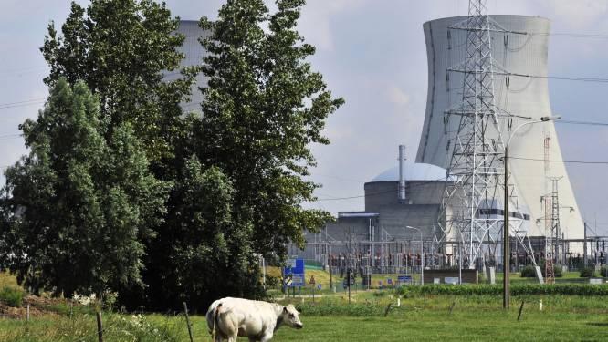 """""""Alle kernreactoren in Doel en Tihange lopen gevaar"""""""