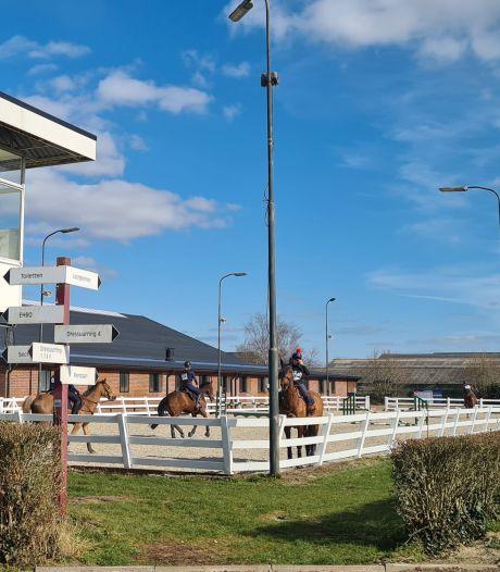 Hoezo corona, hoezo dodelijk paardenvirus? Honderden ruiters en paarden doen mee aan paardenevenement in Schaijk