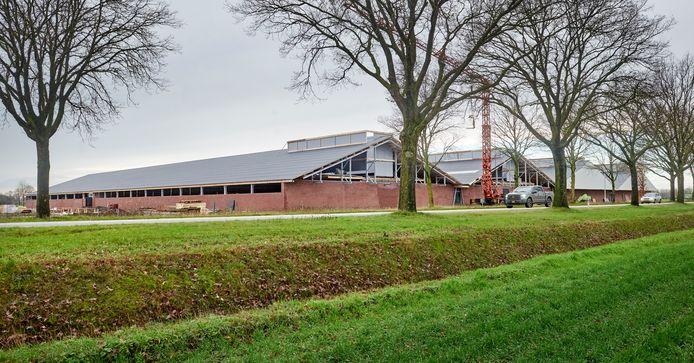 Varkensbedrijf Heijderhoeve aan de Schuifelenberg in Zeeland veroorzaakt volgens de omwonenden veel stank