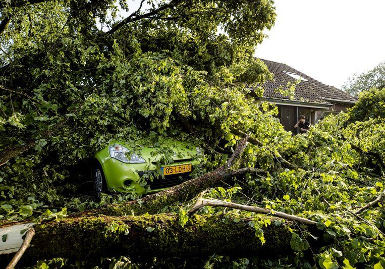 In Leersum is een boom omgewaaid en tegen een woning en op een auto beland. Beeld ANP Sem van der Wal