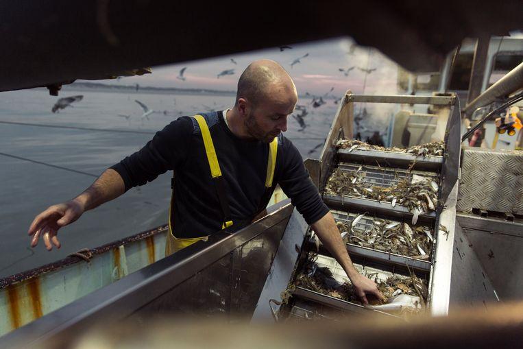 Jan Kegels wil met foodtrucks en zijn boek iedereen even zot krijgen van de Noordzee en haar weelde. Beeld ©jef boes @ initials la