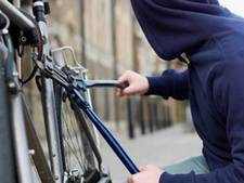 Fietsendieven op de A1 opgepakt na stelen lokkertje politie