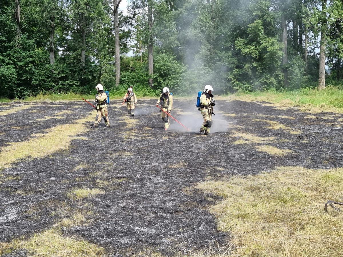 PUURS-SINT-AMANDS - De brandweer kreeg het vuur in het weiland snel onder controle.