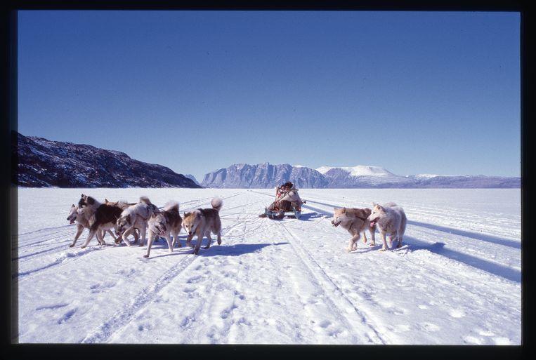 Je kunt ook 'gewoon' met de auto over het ijs rijden, maar we verkiezen uiteraard de hondenslee om naar het dorpje Ikerasak te reizen.   Beeld Veerle Windels