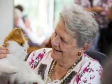 Techniek neemt de zorg steeds meer over: troostende kat voor dementen en pop geeft aan of reanimatie goed gaat