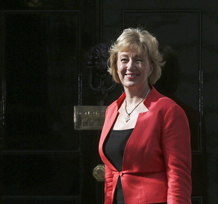 Andrea Leadsom, staatssecretaris van Energiezaken. Beeld reuters