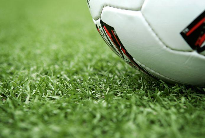 De stad Lier wil zes tot acht voetbalvelden en een Finse piste gaan aanleggen op de site Hoge Velden. De verwerving van de nodige gronden is nog volop bezig.