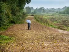 Nieuwe wandelroute in Millingerwaard dankzij opgehoogde kade