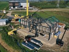 Het uithangbord voor hét laanboomcentrum van Europa krijgt vorm