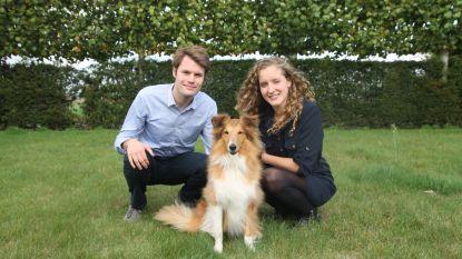 HelloFresh voor honden in Aalter: BuddyBites brengt hondenvoeding op maat aan huis