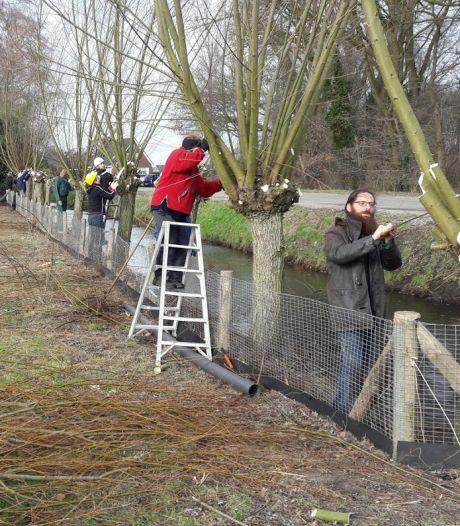 Windmolens ongewenst in de 'Groene Grens' tussen Veenendaal en Ede maar (net) erbuiten mag wel