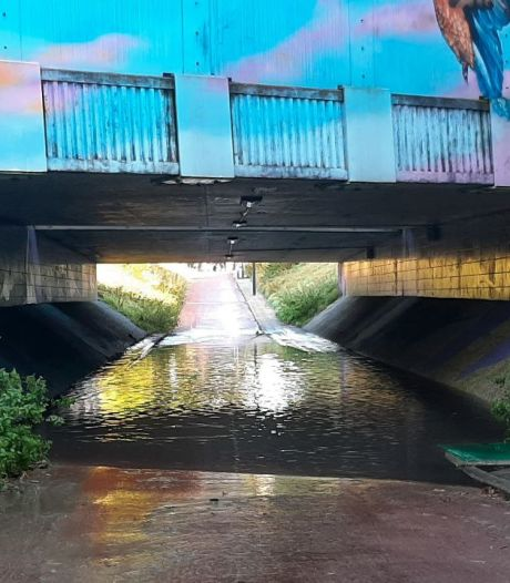 Regenval zet tunnel in Enschede blank