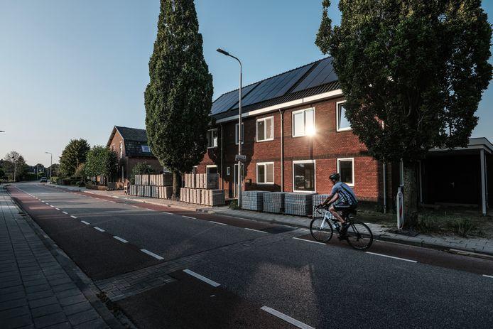 Twee zuileiken aan de Raadhuisstraat in het Gelderse Hengelo worden gekapt, omdat ze te dicht op een recent opgeleverd huizenblok staan.