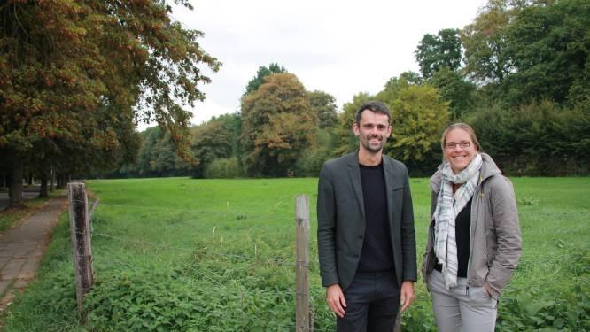 Oppositiepartij Groen vraagt gemeente bos Mussenburg aan te kopen via Vlaamse subsidie