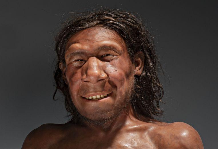 De reconstructie van Krijns gezicht. Beeld Rijksmuseum van Oudheden
