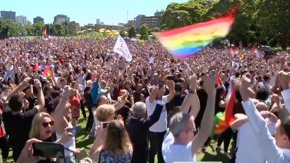 """""""Love is in the air"""": Australiërs vieren resultaat van historische stemming over homohuwelijk"""