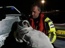 Meisje uit Apeldoorn 's nachts met ouders van schip gered na koolmonoxide-alarm: 'Dit was schrikken'