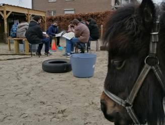 Vier scholen die hun site vergroenen, krijgen financiële steun van provincie