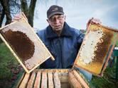 Verdrietige imkers begrijpen er niets van: bijenvolken verdwijnen massaal