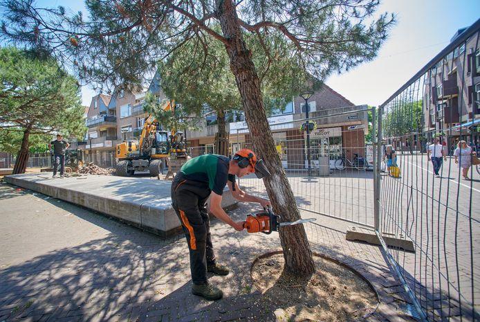 Werkzaamheden aan Terwaenen te Oss. Fotograaf: Van Assendelft/Jeroen Appels