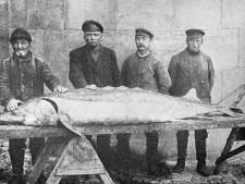 Streekmusical Mürrig Waoter van De Bewaorsmiense over de verdwenen riviervisserij volgend jaar in première