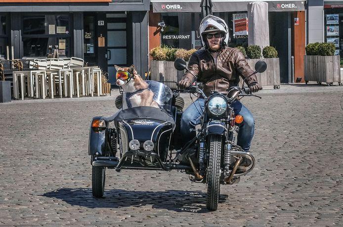 Maarten Mollie en Matisse, op de Grote Markt in Kortrijk.