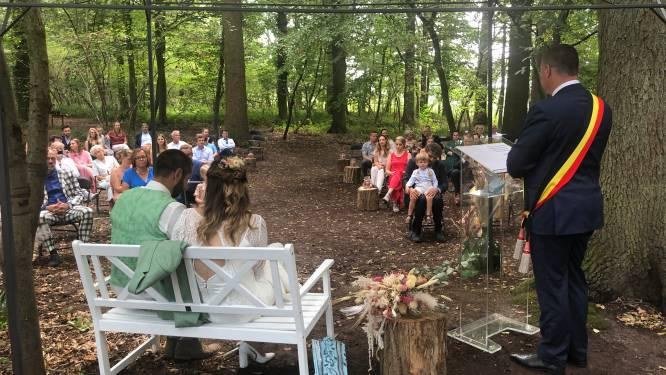 Gemeente investeert in trouwbos en lanceert nieuwe huwelijksformules