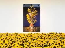 Museum gevuld met zonnebloemen voor MH17