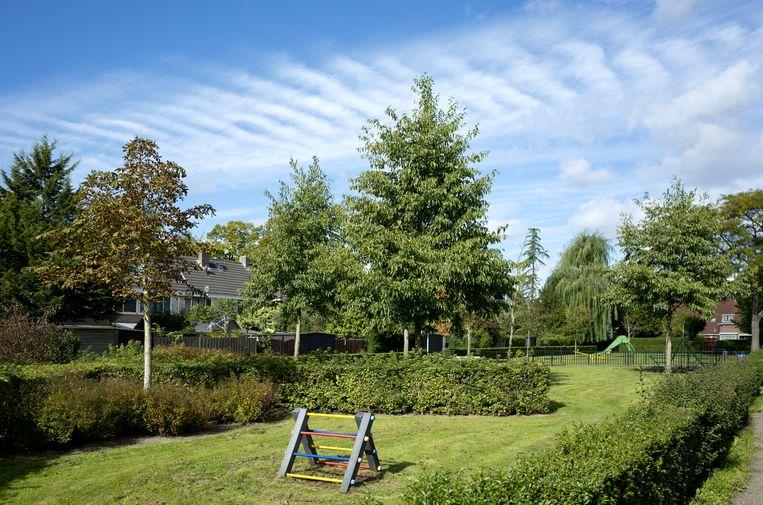 Een binnentuin in Vreewijk. Beeld Johan Nebbeling