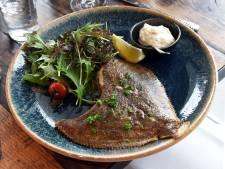 Voor meeste toprestaurants is serveren bedreigde vis nog doodgewoon