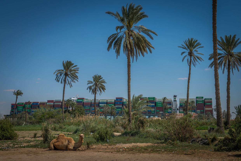 Het containerschip Ever Given ligt sinds afgelopen week klem  in het Suezkanaal. Bergers doen al dagen pogingen om het schip, dat geladen is met 20.000 containers, weer vlot te trekken.