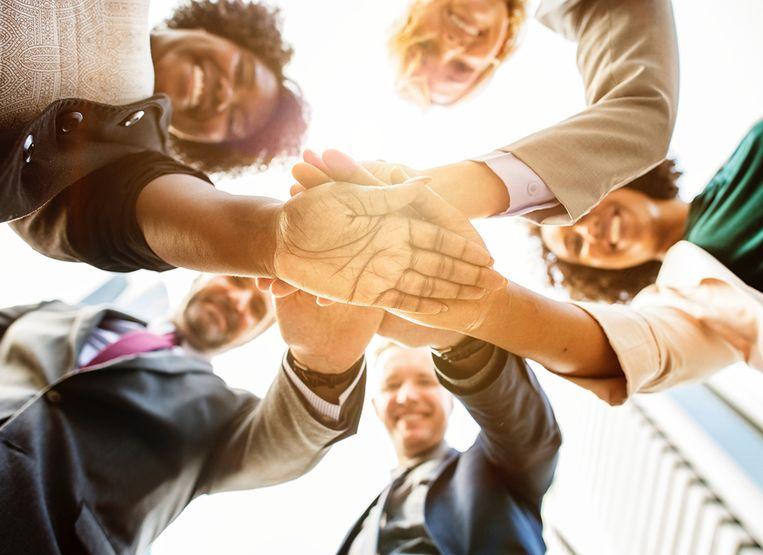 Gemengde teams blijken het economisch opmerkelijk beter te doen dan niet-gemengde teams.  Beeld Shutterstock