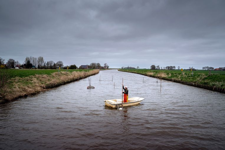 Vismonitoring in Oost-Groningen. Beeld Reyer Boxem
