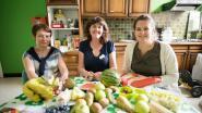 Huis van het Kind viert voor Week van de Opvoeding: van fruitpapjes maken tot workshop 'kinderen veilig online'