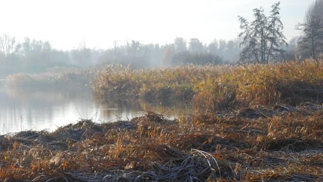 Natuurpunt in snelheid gepakt door aannemer Oosterweel: heropening Blokkersdijk valt in het water