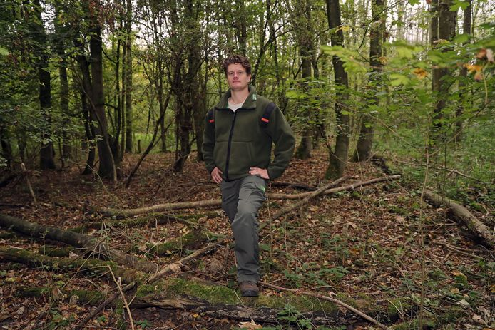 Boswachter Jasper Louman geniet van het Mallebos: ,,Het mooie van een bos is, dat het z'n eigen tempo bepaalt.''