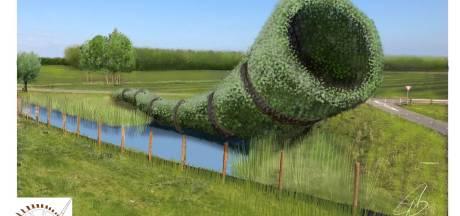 XXXL-hoorn en plantage naast N18 bij Eibergen: 'Hier komt de midwinterhoorn meer dan ooit tot leven'