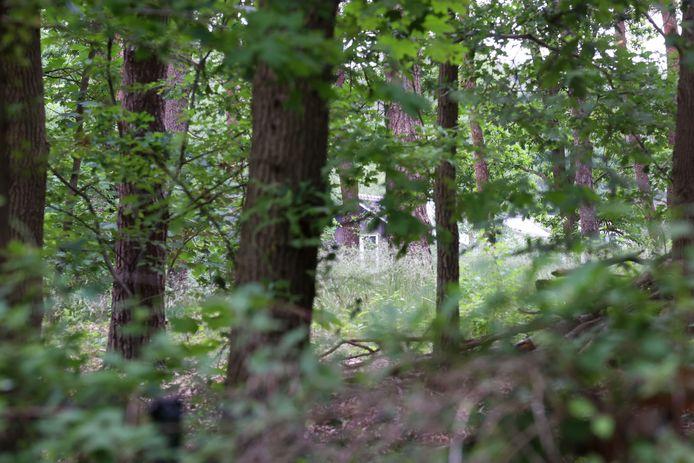 De forensische recherche is maar liefst elf dagen bezig met onderzoek in en rond de bosvilla.