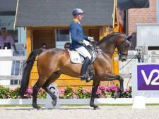 Para-ruiter Hosmar scoort kwartet gouden medailles