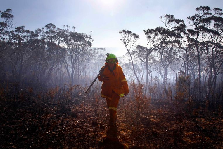 A female Rural Fire Service (RFS) firefighter walks through a burnt area after trying to extinguish a small fire approaching homes near the Blue Mountains suburb of Blackheath, located around 70 km (43 miles) west of Sydney, October 23, 2013. A state of emergency has been declared in the Australian state of New South Wales, as bushfires continue to burn west of Sydney and weather conditions expected to worsen over the coming days. Around 60 fires are still burning across the state. REUTERS/David Gray (AUSTRALIA - Tags: DISASTER ENVIRONMENT TPX IMAGES OF THE DAY) Beeld REUTERS