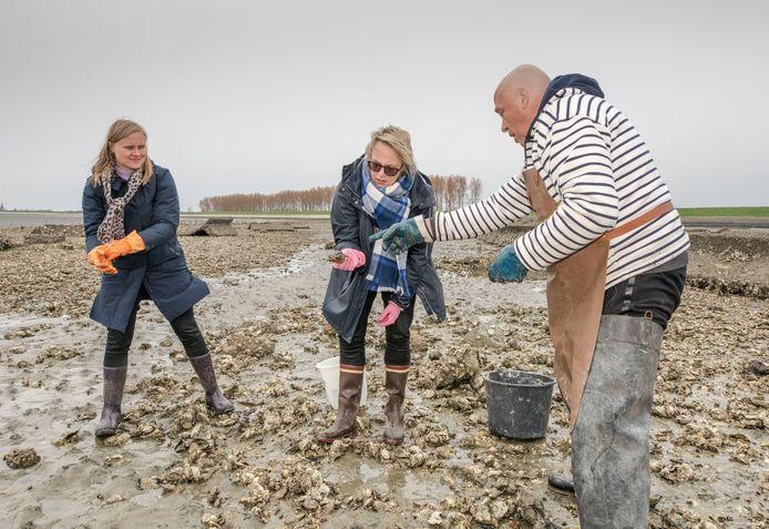 Aukje (met oranje handschoenen) en Anne uit Amsterdam :,,Er liggen zoveel oesters welke is nu goed ? Ko de Oesterman geeft raad.