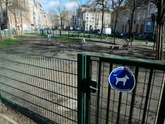 Brusselaars vragen om meer speelzones voor dieren