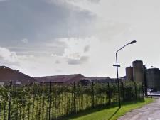 Boekelse buren ruziën voor rechter door over plattelandswoning