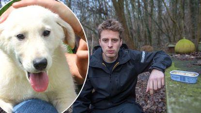 Pup van 9 maanden sterft na eten van vergiftigde makreel