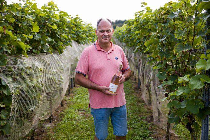 Paul Bosse is eigenaar van wijngaard Domaine Brabantse Wal in Ossendrecht en verbouwt druiven op 1 hectare grond. Dit jaar valt de oogst tegen door een koud en nat voorjaar.