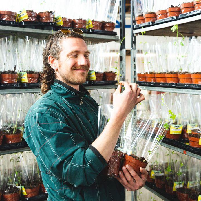 'Hopboer' Jamie met de hopplantjes.